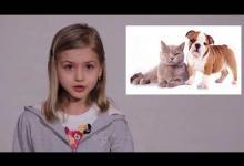 Ответственное отношение к собакам. Видеоурок для 7-11 лет.
